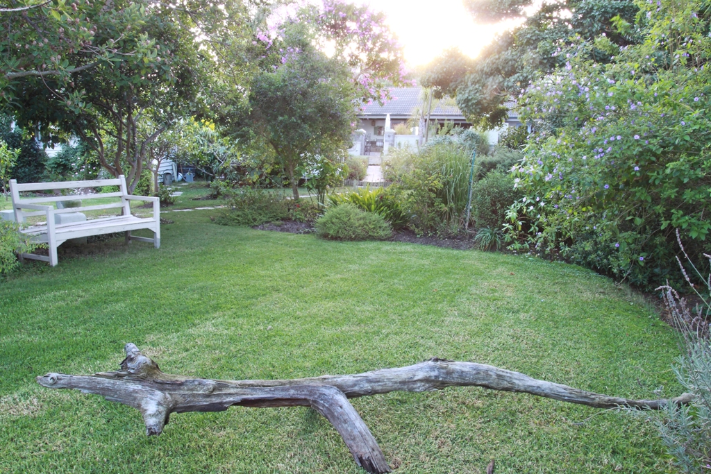 Garden Blog 2