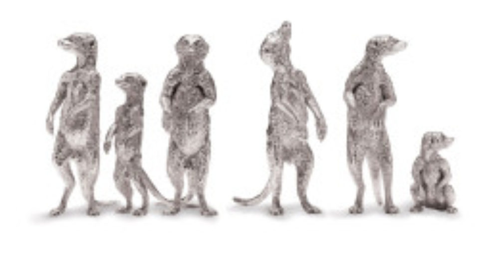 202-427-32_meerkat-family-medium-250×250 – Copy (2)