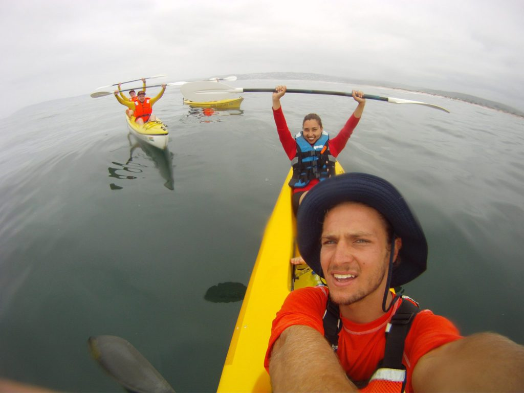 Sea kayaking Plett